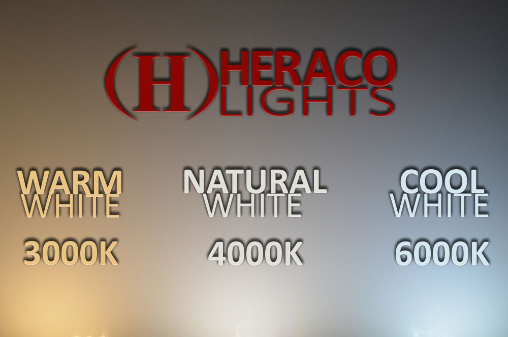 Micro Wire N Light Led Fixture Kit Heraco Lights